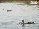 Cá mòi ắp ụ sông Yên, ngư dân thả sức vây bắt