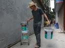 Gặp cựu binh dù Mỹ trở lại Hà Nội diệt… tường bẩn