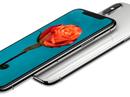 iPhone X về Việt Nam: 50-100 triệu đồng/ chiếc?