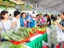 Ngày hội Nông trại xanh Phú Mỹ Hưng lần 2-2017