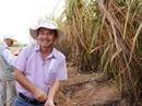 Hoàng Anh Gia Lai có thể bán xong thủy điện, mía đường trong quý I