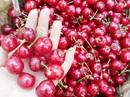Cherry Trung Quốc 90 ngàn đồng/kg bán tràn lan