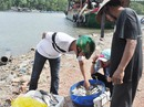 Sớm mai ghé thăm bến cá vùng nước lợ