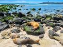 10 hòn đảo đẹp nhất thế giới năm 2017