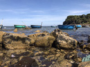 """Vẻ hoang sơ của Gành Yến - nơi đá """"tự tình"""" với sóng"""