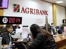 Agribank sẵn sàng cổ phần hóa