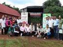 Hỗ trợ phát triển cà phê Buôn Ma Thuột