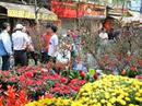 Nhiều hoạt động mừng năm mới tại Hà Nội