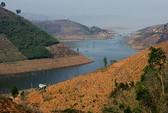 """Thủy điện """"tàn sát"""" gần 50.000 ha rừng"""