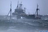Hai tàu cá Trung Quốc chìm tại vùng biển Hàn Quốc
