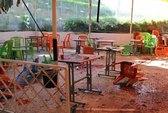 Syria: Đại học Damascus bị tấn công, 15 người chết