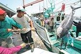 Nhật bắt một tàu cá Đài Loan
