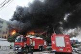 Cháy nhà máy gia cầm, hơn 100 người thiệt mạng