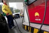 """Trung Quốc """"xử"""" tiếp lãnh đạo dầu khí"""