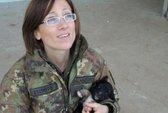Ra tòa án binh vì cứu mèo