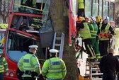 Xe buýt đâm cây cổ thụ, 31 người nhập viện