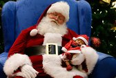 Muôn màu ông già Noel