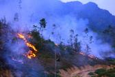 Cháy rừng cạnh khu di tích, hàng trăm người đến dập lửa