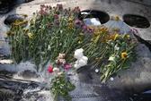 """Thêm một """"nạn nhân"""" vụ rơi máy bay MH17"""