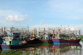 Trước bão Thần Sấm, không cho tàu tham quan Vịnh Hạ Long