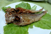 Lạ lạ ăn khô cá đỏ dạ