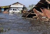 Đối phó tốt hơn với sóng thần