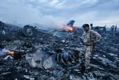Máy bay Malaysia bị dắt vào Donetsk?