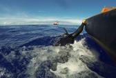 """Vụ máy bay mất tích: Úc phát hiện 2 tín hiệu """"ping"""" mới"""