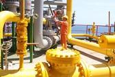 Giá dầu lao dốc: Ứng phó ra sao?