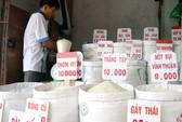 Xuất khẩu gạo ưu đãi người ngoài?