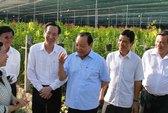 Củ Chi tập trung nuôi trồng cây con có giá trị cao