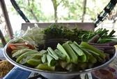 Canh chua cá ngát nấu bần