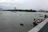 Đang đi, một cô gái trẻ lao sông Sài Gòn tự vẫn