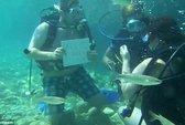 Suýt chết vì màn cầu hôn dưới đáy biển