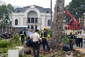 Dùng gỗ cây bị đốn trước Nhà hát TP HCM trùng tu chùa
