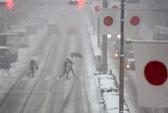 Bão tuyết khủng khiếp hoành hành khắp Nhật Bản