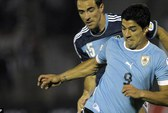 Suarez có nguy cơ bỏ lỡ VCK World Cup 2014