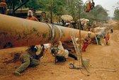Chad kiện tập đoàn dầu khí Trung Quốc gây ô nhiễm