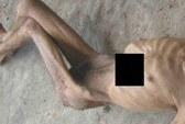 Lộ hình tra tấn tù nhân khủng khiếp tại Syria
