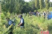 Lo ngại lạm sát nghi can khủng bố ở Trung Quốc