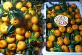 Gần 300 tấn trái cây Trung Quốc dính độc