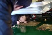 Hàn Quốc: Tuyết đè sập trần nhà, vùi 100 sinh viên