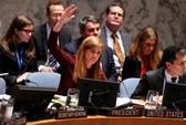 """Mỹ không """"cô đơn"""" trong việc không kích IS ở Syria"""