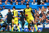 Nhân lúc Courtois chấn thương, Cech ra yêu sách với Chelsea