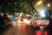 Hà Nội: Xà cừ cổ thụ bật gốc, 1 nữ sinh viên bị thương
