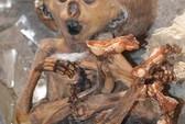 Nga: Phát hiện phòng thí nghiệm ghê rợn