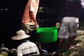 Có một chợ đêm hải sản nhộn nhịp trên mép đìa