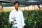 Thu 7 tỉ đồng/năm nhờ trồng hoa hồng