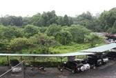 Hà Nội quyết xây bãi xe 10.000 m2 trong Công viên Thống Nhất