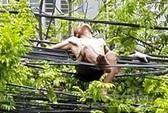 Nam thanh niên cởi trần trèo lên đường dây điện nằm chơi